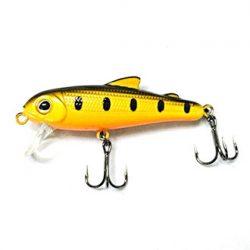 Bullet Lures 5cm Minnow – Floating/Silent.