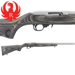 Ruger 10 / 22 Target Stainless.