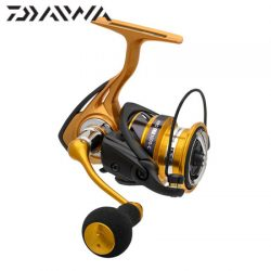Daiwa Light Tackle Aird Reel.